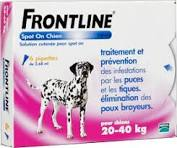 Vermifuge Et Anti Puce Chat Pharmacie