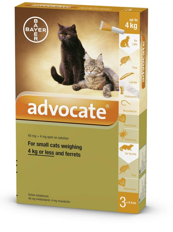 Antiparasitaire Pour Chat