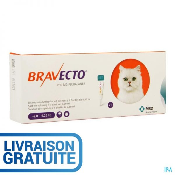 Bravecto Plus Chat