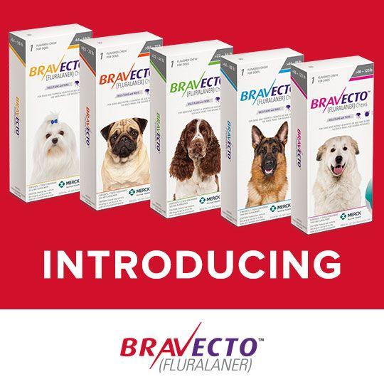 Bravecto Fluralaner Chews 1000Mg