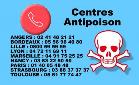 Centre Antipoison Chat