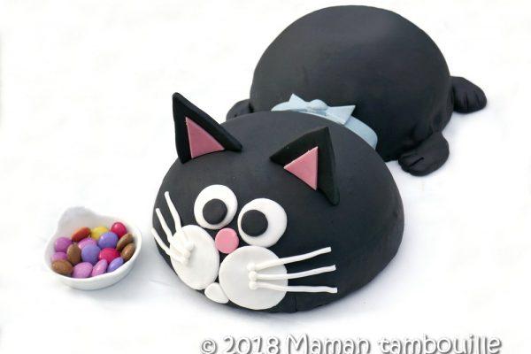 Gâteau D'anniversaire Pour Chat