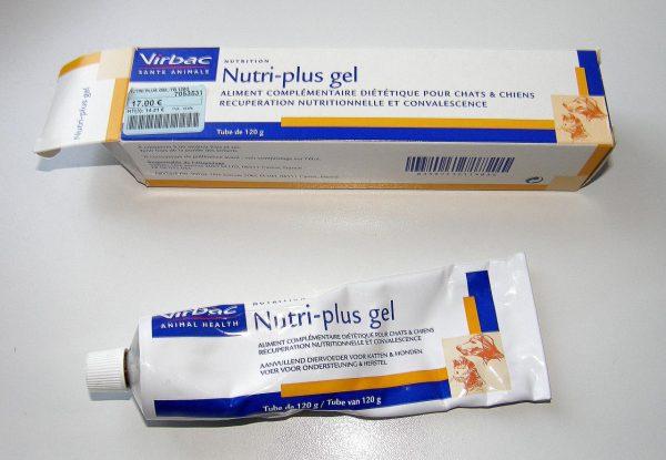 Médicament Diarrhée Chat Pharmacie