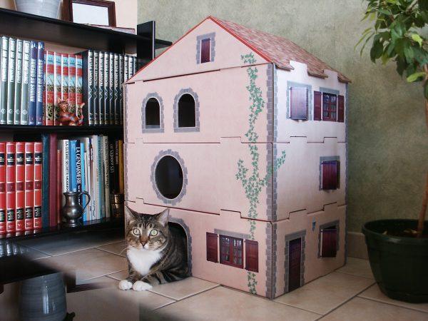 Maison Litière Chat Pas Cher