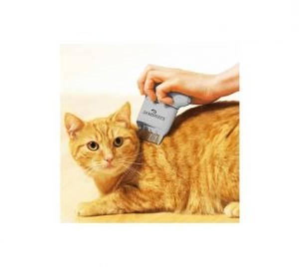 cachet antipuce pour chat