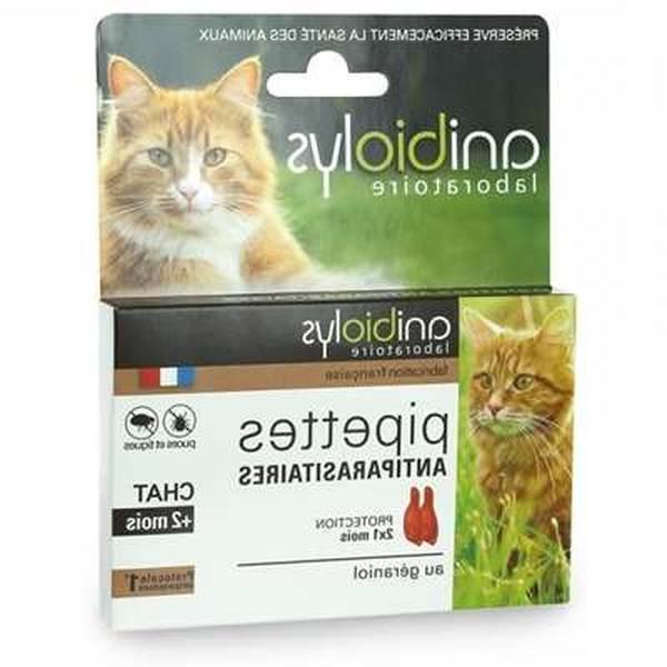 antipuce naturel pour chat