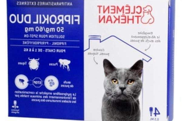 Comprimé antipuce pour chat