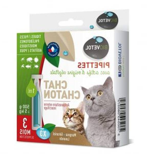 Antipuce vermifuge chat